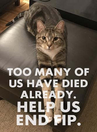 help us endFIP®