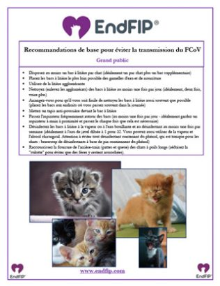 FCov-general-prevention-chart-FR-th