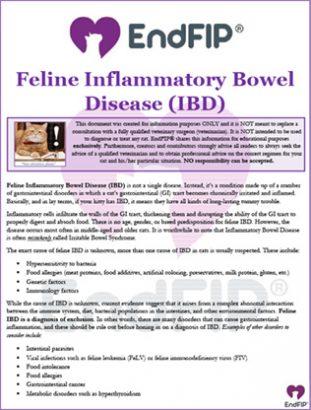 Feline-IBD-th