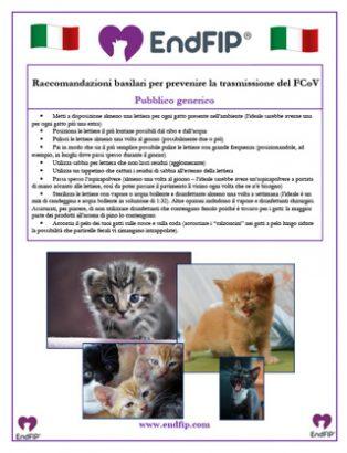 fcov-prevention-general-italian-th