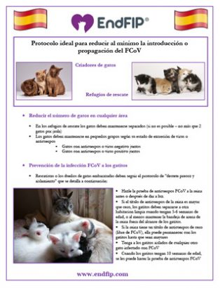 minimize-fcov-catteries-shelters-spanish-th